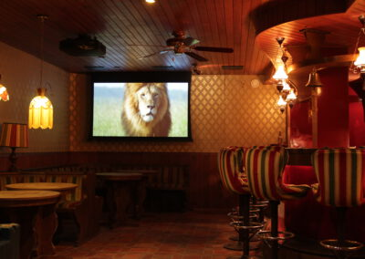Home Cinema Bioscoop